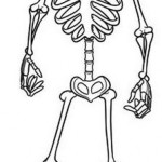El esqueleto de Hotel Transilvania