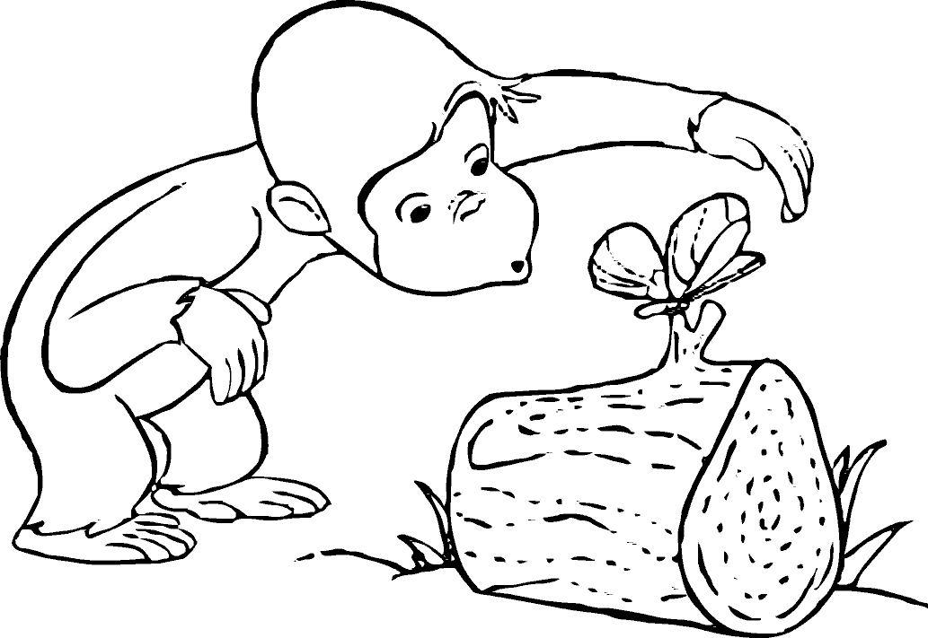Dibujo para colorear mono con mariposa en tronco