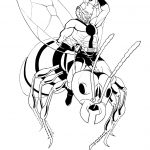 Dibujo Ant-Man 1495028516