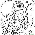 Dibujo buhos 1494368895