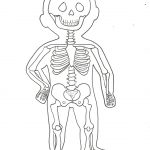 Dibujo El cuerpo humano 1494342150