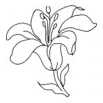 Dibujo flores 1494372587
