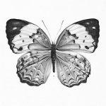 Dibujo Mariposas 1499468639