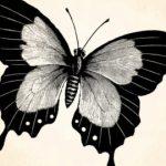 Dibujo Mariposas 1499468737