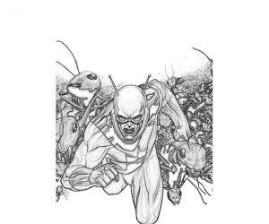 Dibujo Ant-Man 1495028716