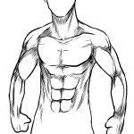 Dibujo El cuerpo humano 1494342143