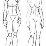 Dibujo El cuerpo humano 1494342152