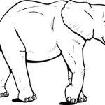 Dibujo Elefantes 1495031155