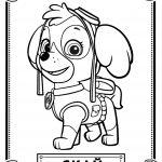 Dibujo Patrulla Canina 1494411554
