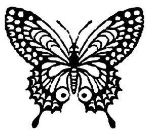 Dibujo Mariposas 1499468571