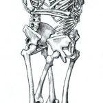 Dibujo Esqueletos 1507019820
